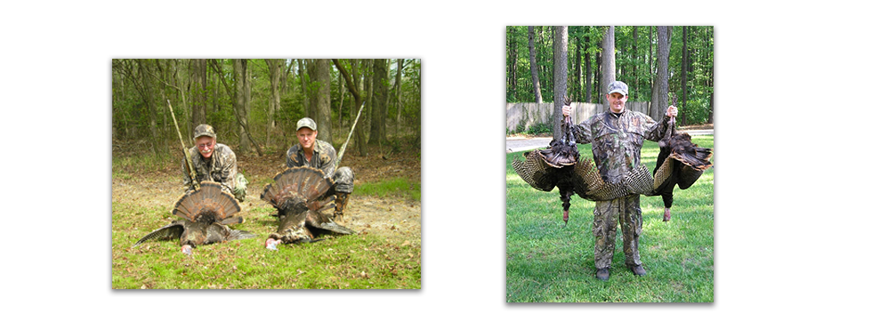 Turkey Hunts New England And Eastern Shore Big Game Snow Goose And Duck Hunting In New England Eastern Shores Areas