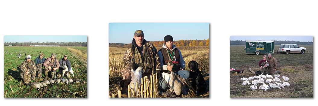 Goose Hunts Big Game Snow Goose And Duck Hunting In New England Eastern Shores Areas